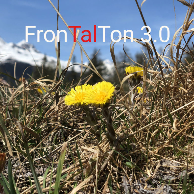 04. Dezember 2020<br/>FronTalTon 3.0 – MundArt im Duo